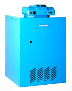 Напольный газовый чугунный отопительный котел Buderus Logano G124WS - 20 кВт с атмосферной горелкой, 7738501175